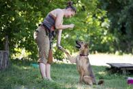 Фото: Ориентальная короткошёрстная : Отдам в хорошие руки молодого пса Рудольфа